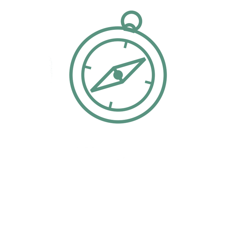 evolucao.png