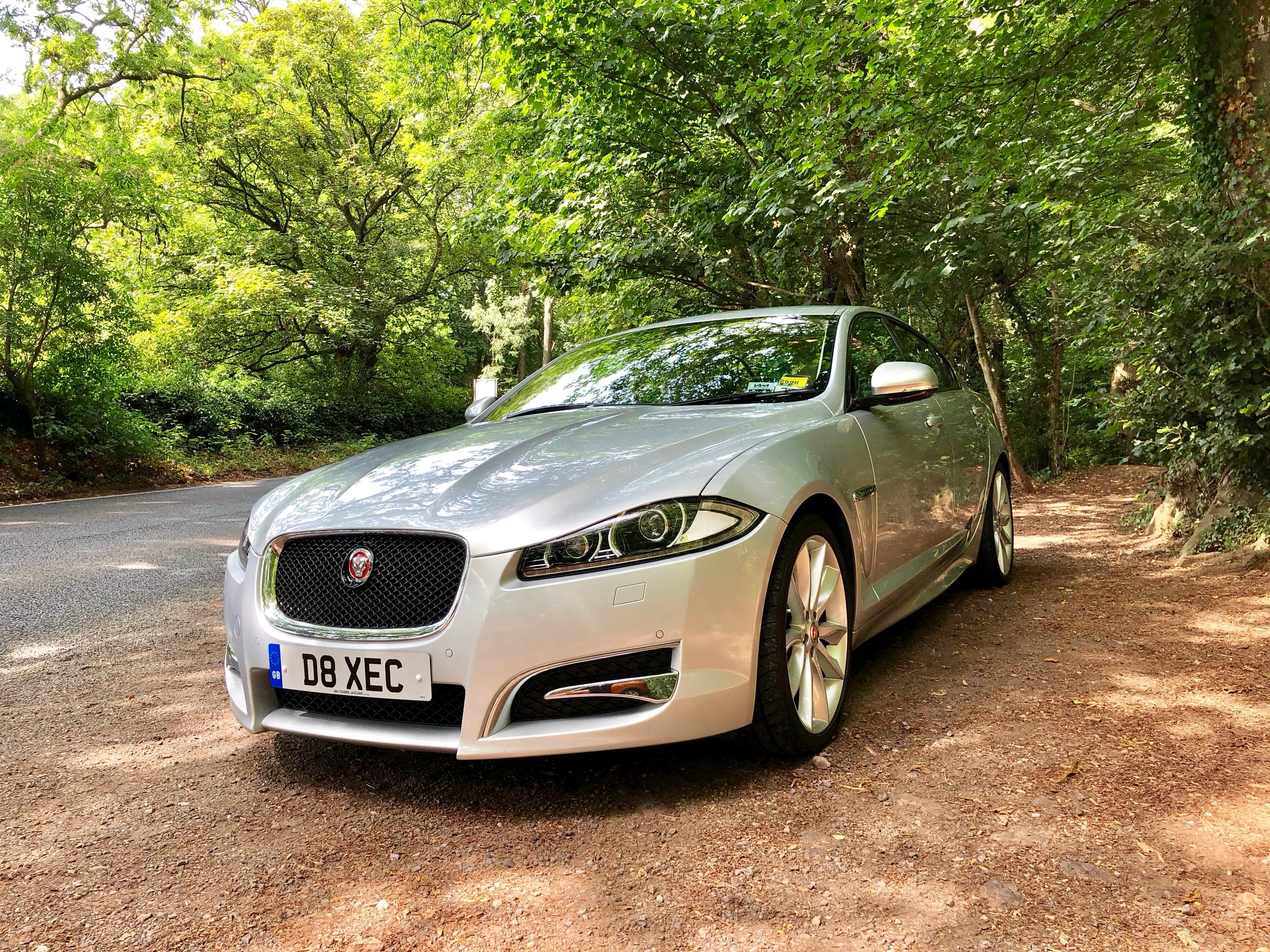 Jaguar XFS Lost In The Wilderness