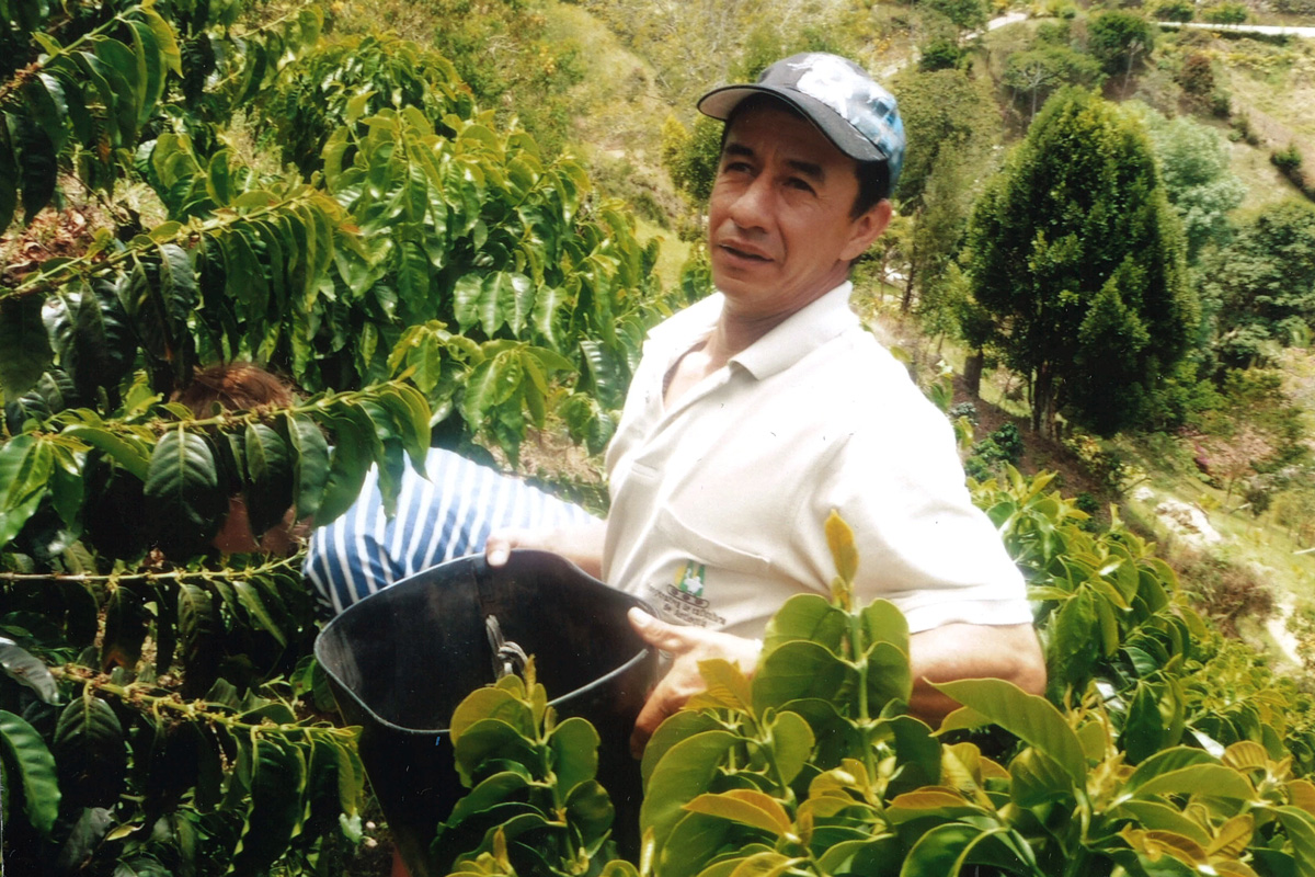 The first of two ShareTrade coffees comes from the high altitude farm of Miller Marin in Penol, in the region of Antioquia, Colombia (photo: Big Rock Coffee Company, 2018)