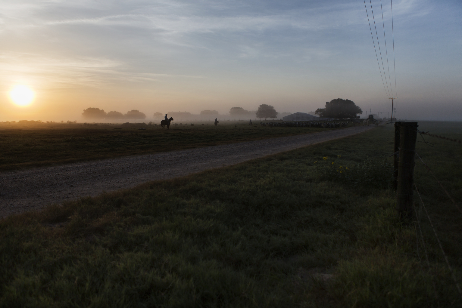 Frank, the Head Rancher of the Kaechele Ranch,and his son, Ryan, scale through the fields of the Texas prairie each morning as the sun rises above the horizon.  The Kaechele Ranch was founded in 1899 by the grandfather of Frank's wife, Bonnie. The 13,000-acre ranch in southeast Texas is located along the San Bernard River, where the Austin, Colorado and Wharton County lines meet.