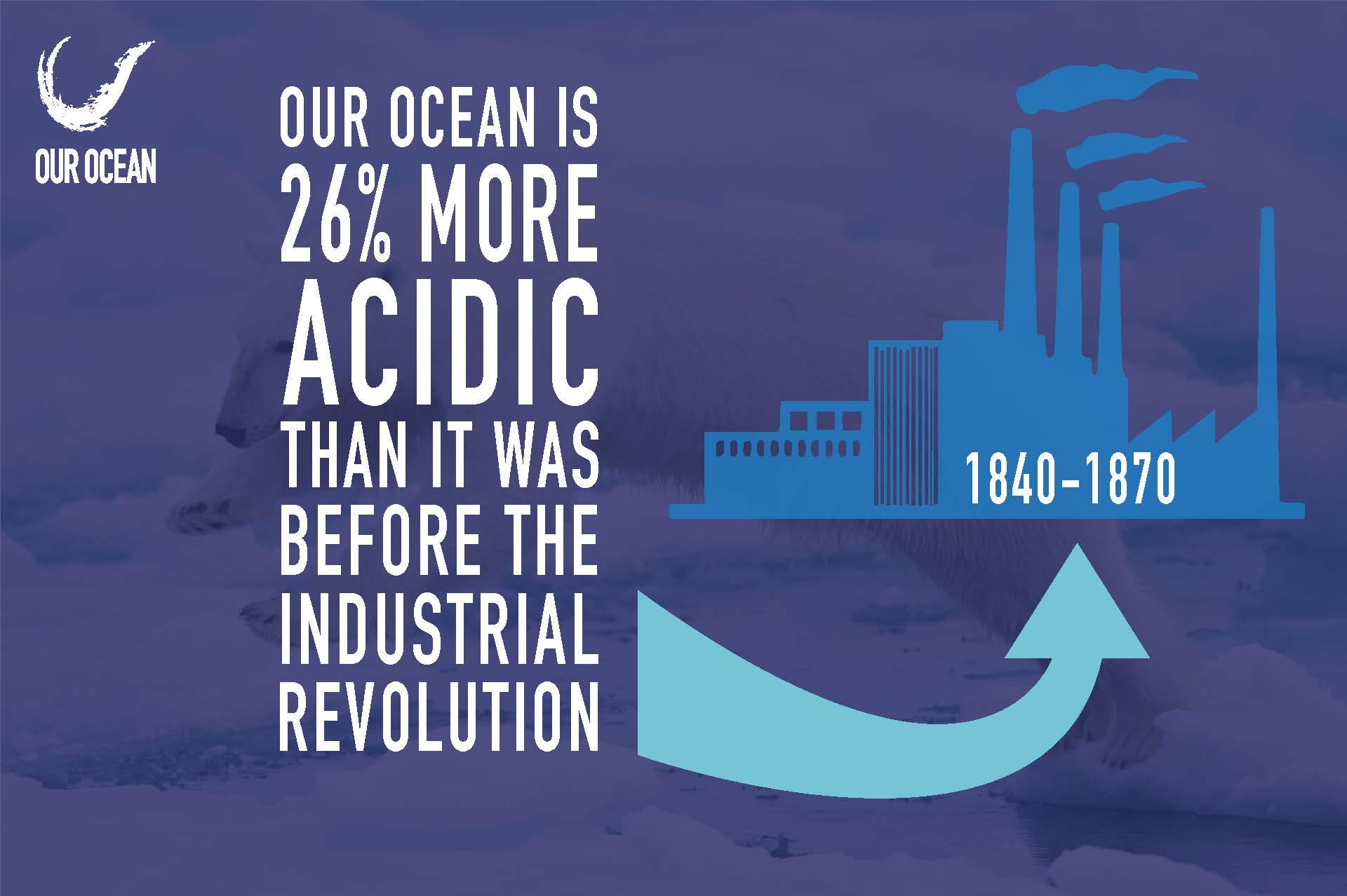 7. Ocean Acidification Infographic.jpg