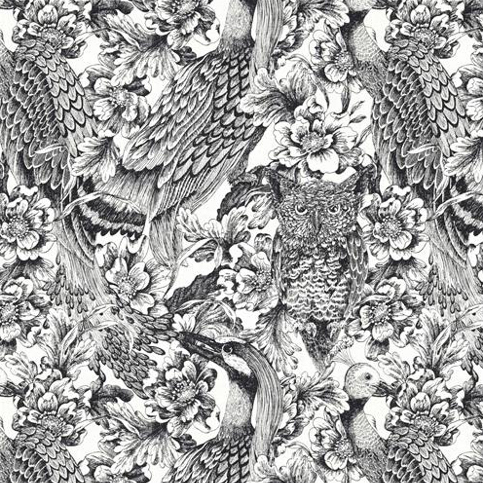 Etched Aviary by DwellStudio in Jet