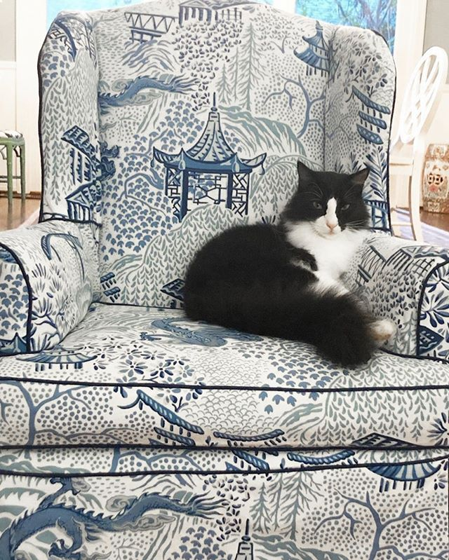 Happy Caturday! This adorable feline from @luckypeacockdesigns knows how to spend the weekend—curled up in an armchair decorated in the Oxnard fabric from @vernyipdesigns! How are you spending your weekend? #vernyip #CalicoDesign #caturday #homedecor #interiordesign #designerfabrics