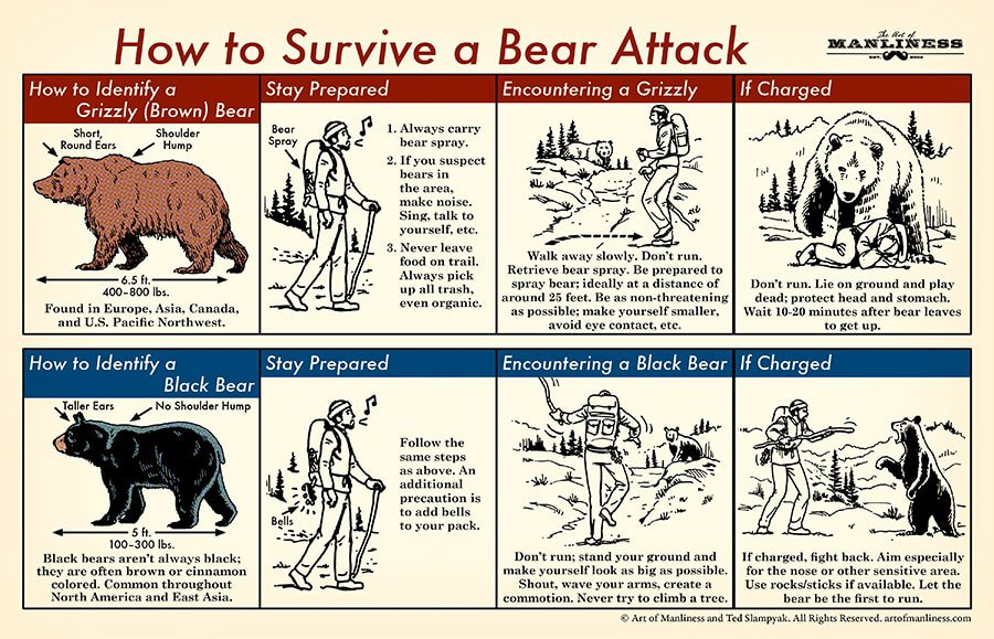 Thanks Art of Manliness for these helpful bear tips! www.artofmanliness.com