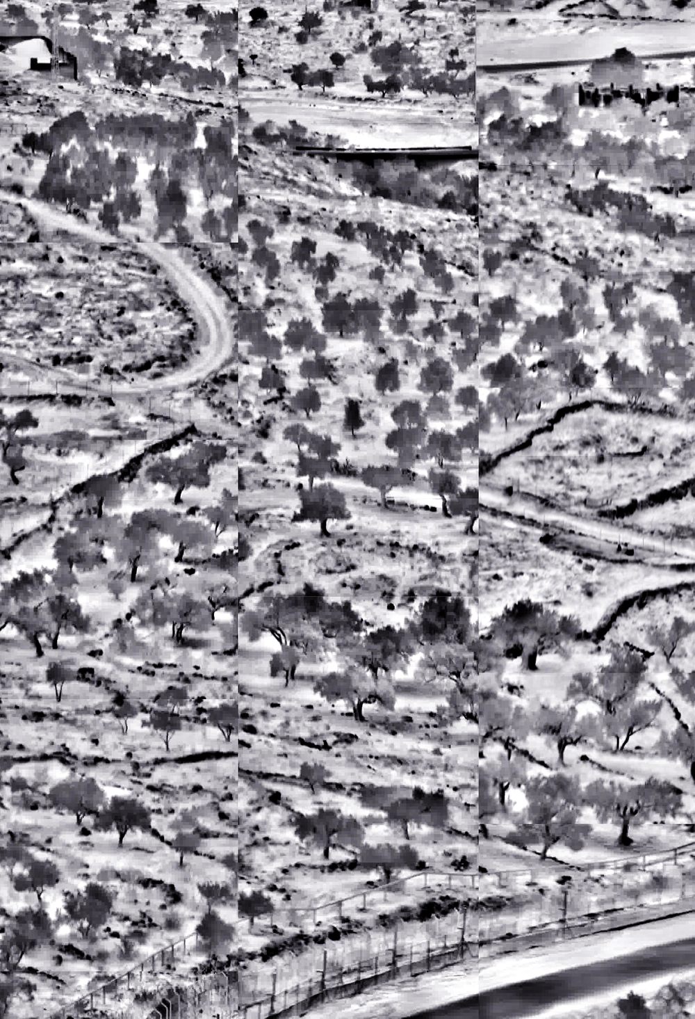 "West Bank,الضفة الغربية,הגדה המערבית I 33""x23"" I ""44""x64 I "" Digitally joined surveillance footage"