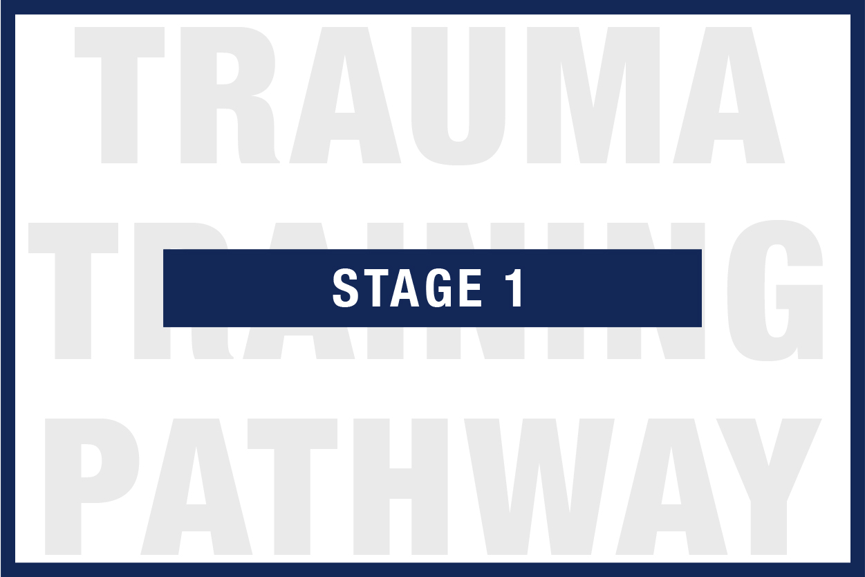 trauma_training_pathway-01.jpg