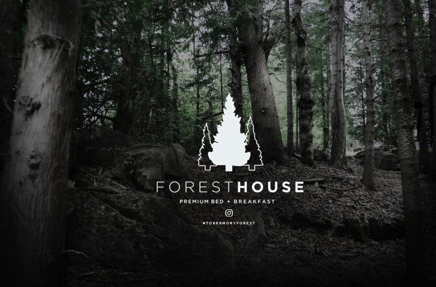 Forest House with background.jpg