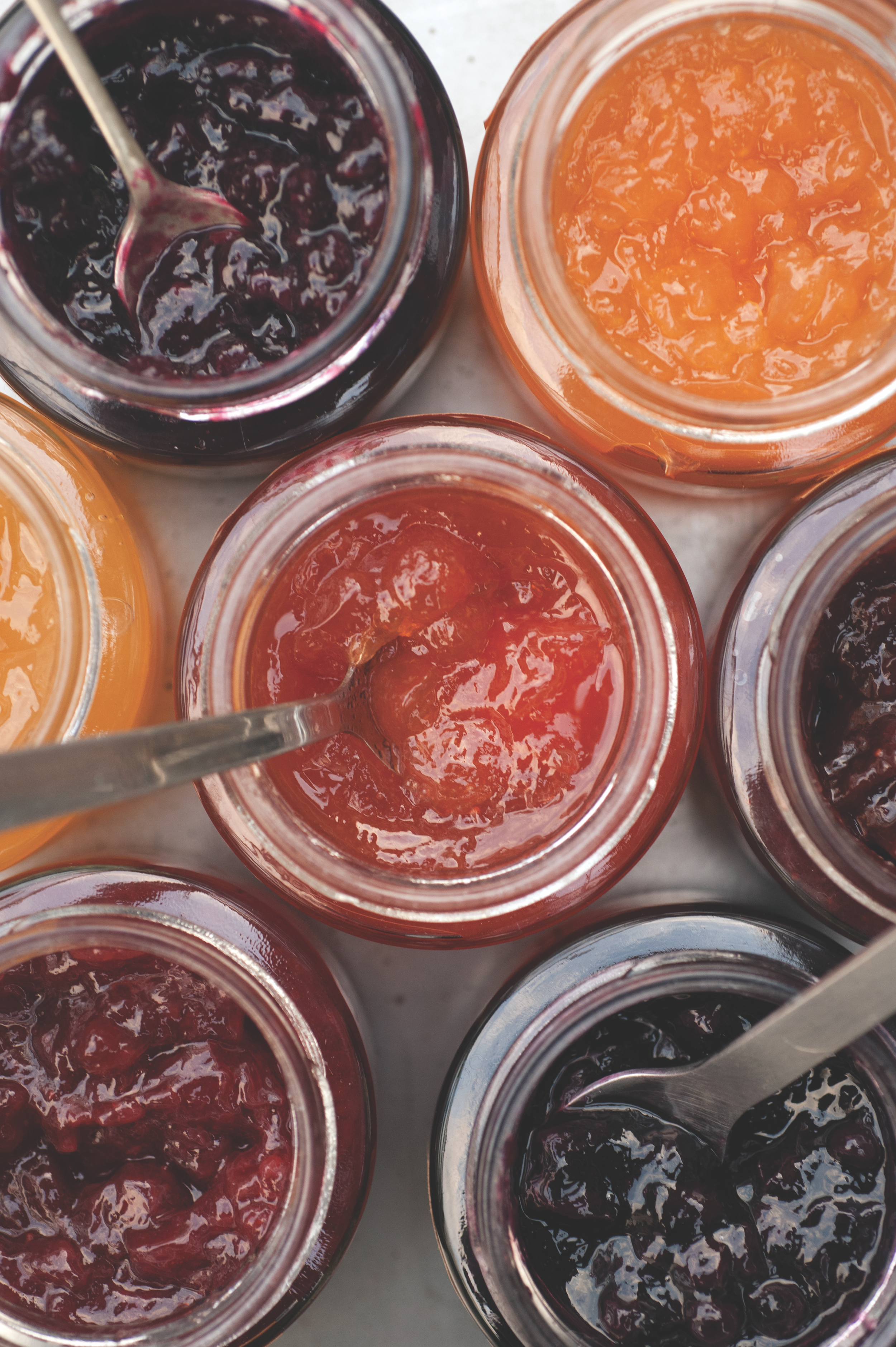 WHY OUR JAM - IS THE JAM