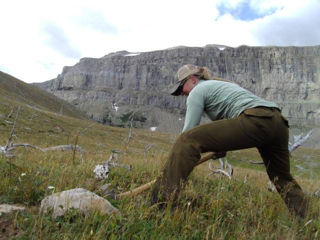 TRAIL WORK TO MAINTAIN WILDERNESS ACCESS