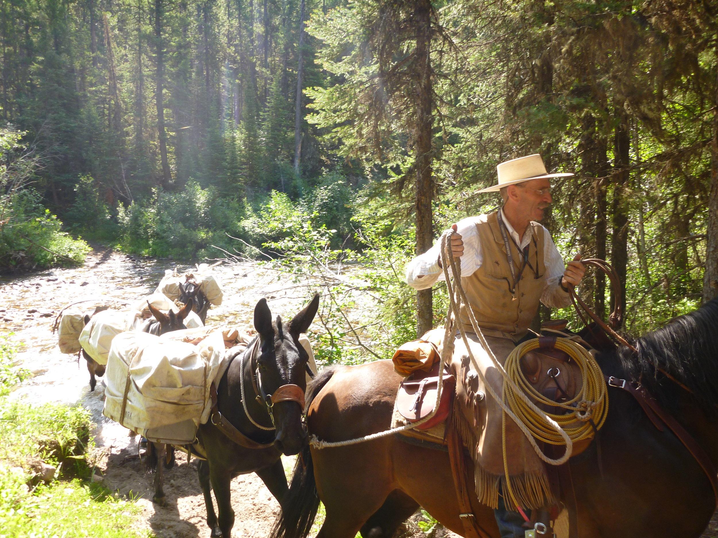 volunteer-packers-bob-marshall-wilderness