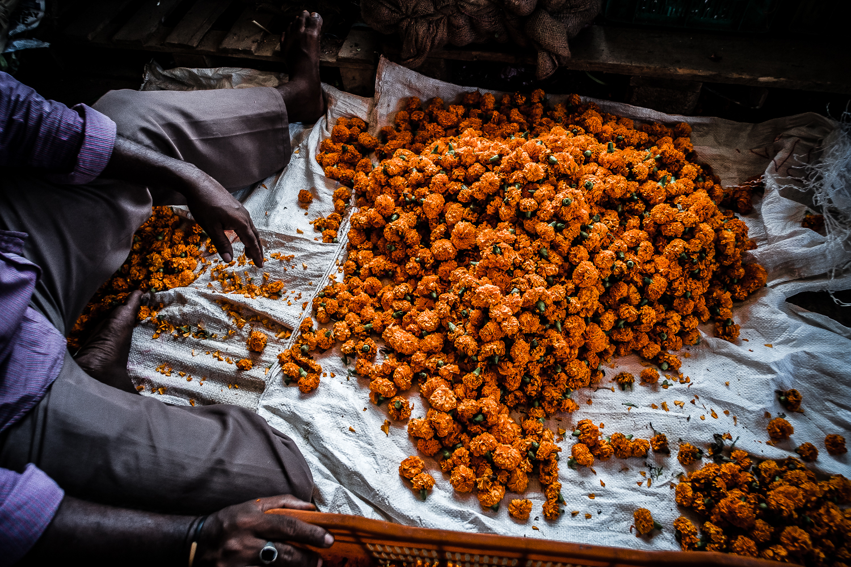 Flower Market, Aberdeen Bazaar, Andaman Island, India