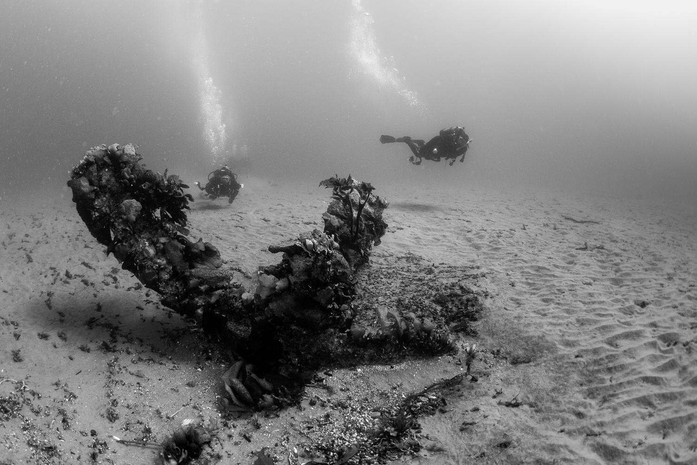 Wreckage of the Grumman Guardian, Santa Cruz Island, CA