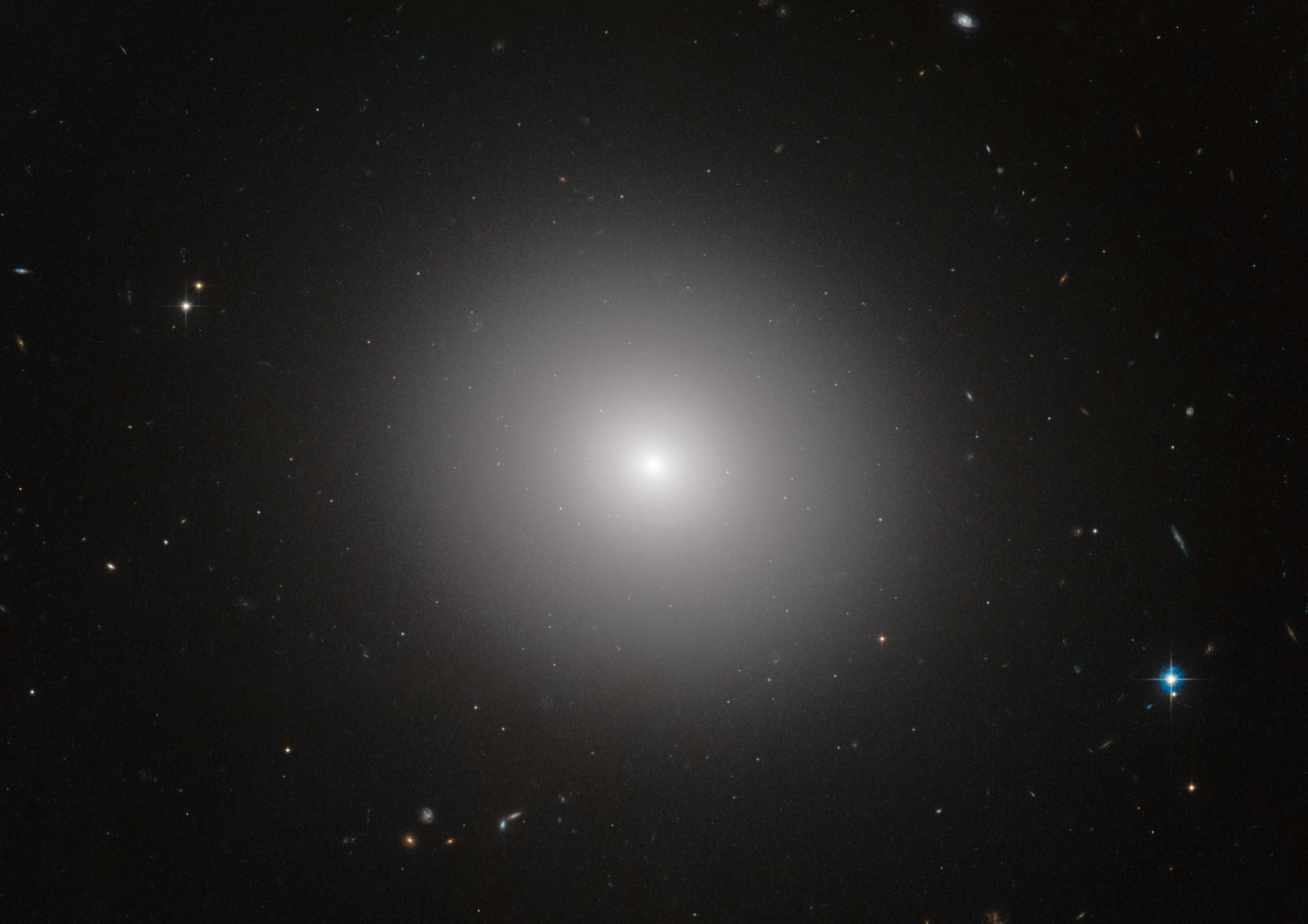 This NASA/ESA Hubble Space Telescope image shows an elliptical galaxy known as IC 2006. Massive elliptical galaxies like these are common in the modern Universe, but how they quenched their once furious rates of star formation is an astrophysical mystery.  The quenching of star formation seems to have started in the cores of the galaxies and then spread to the outer parts. Image credit: ESA/Hubble & NASA