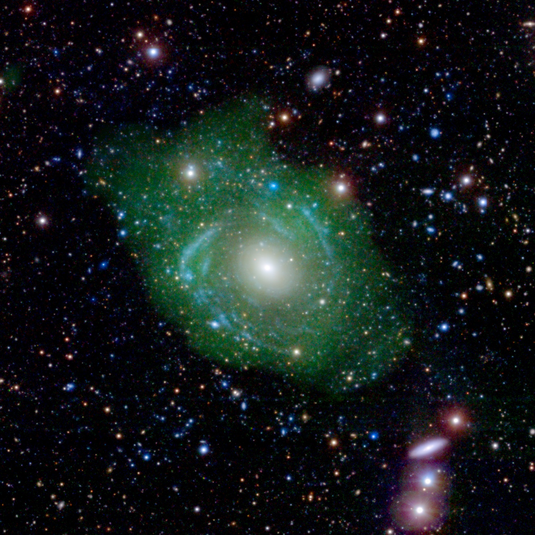 UGC 1382 appeared to be a simple elliptical galaxy, based on optical data from the Sloan Digital Sky Survey (SDSS). But spiral arms emerged when astronomers incorporated ultraviolet data from the Galaxy Evolution Explorer (GALEX). Combining that with a view of low-density hydrogen gas (shown in green), detected at radio wavelengths by the Very Large Array, scientists discovered that UGC 1382 is a giant. Image credit:NASA/JPL/Caltech/SDSS/NRAO
