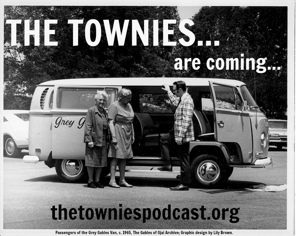 the-townies-are-coming-grey-gables