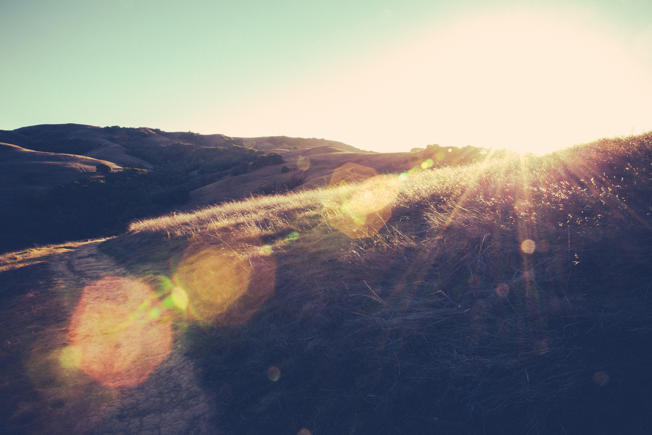 Glimsen-beauty.jpg