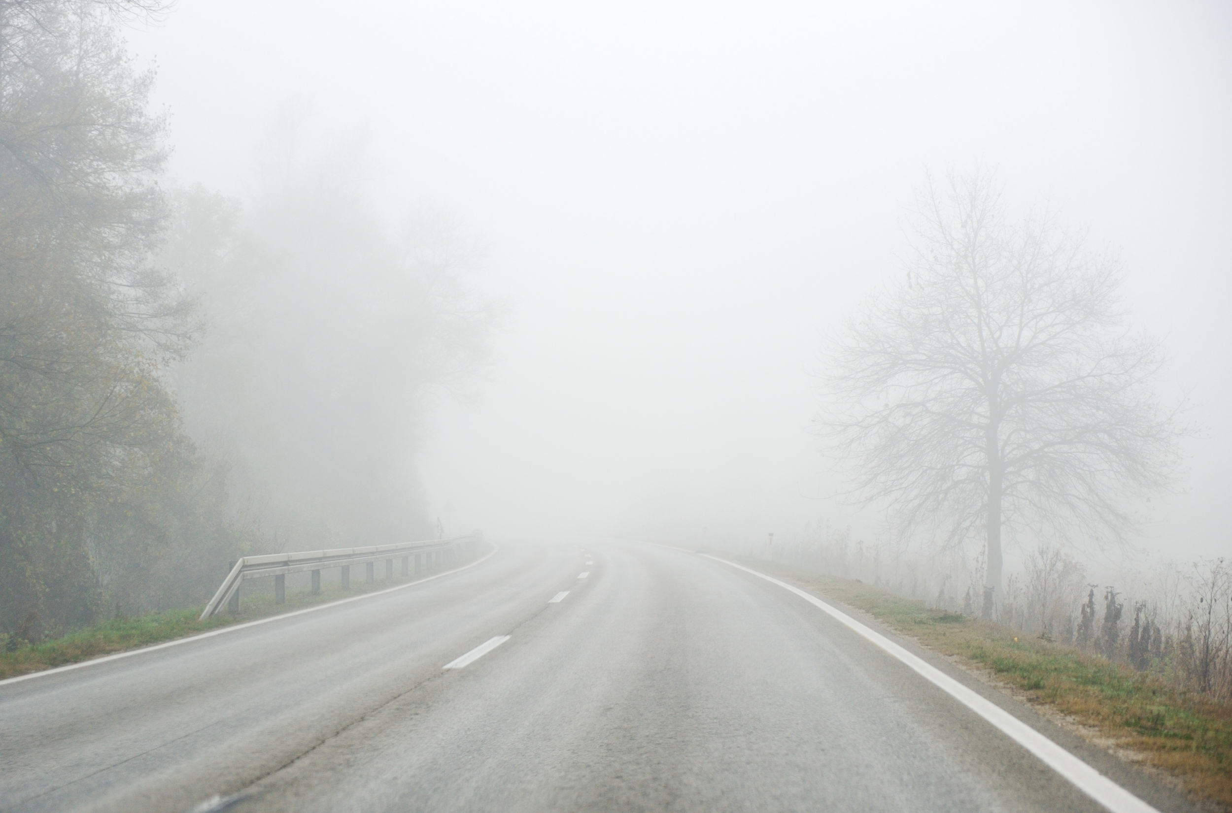 foggy-road.jpg
