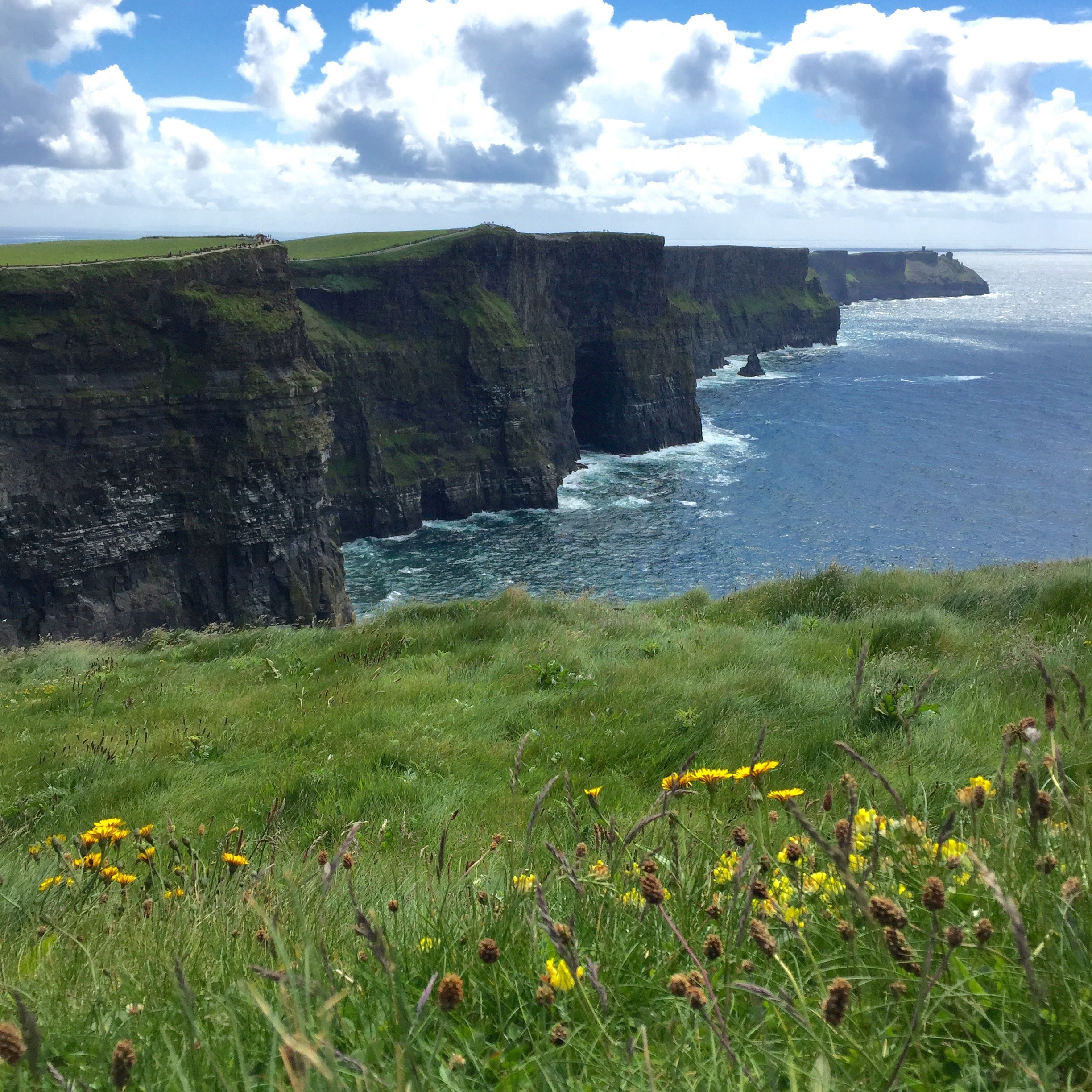 Cliffs of Moher. The left side.