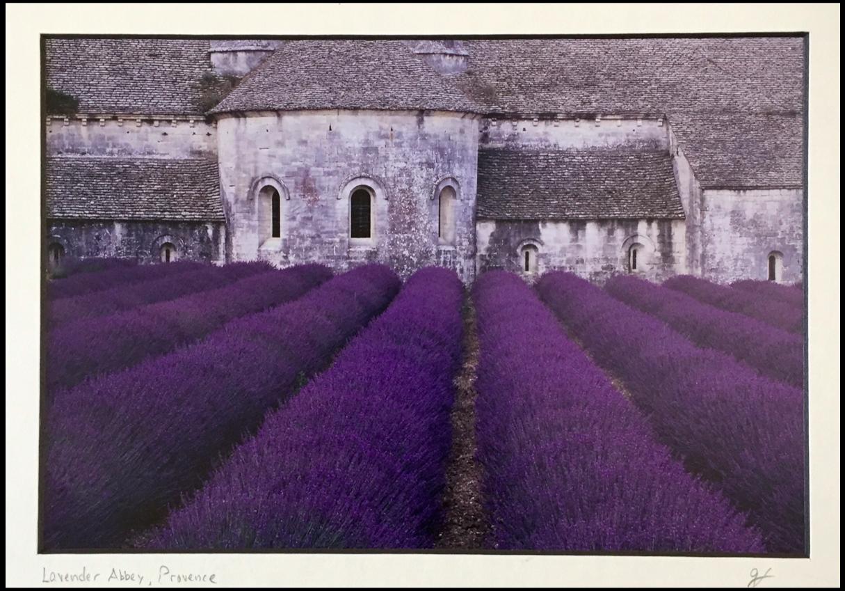 lavender-Senanque-Abbey.jpg