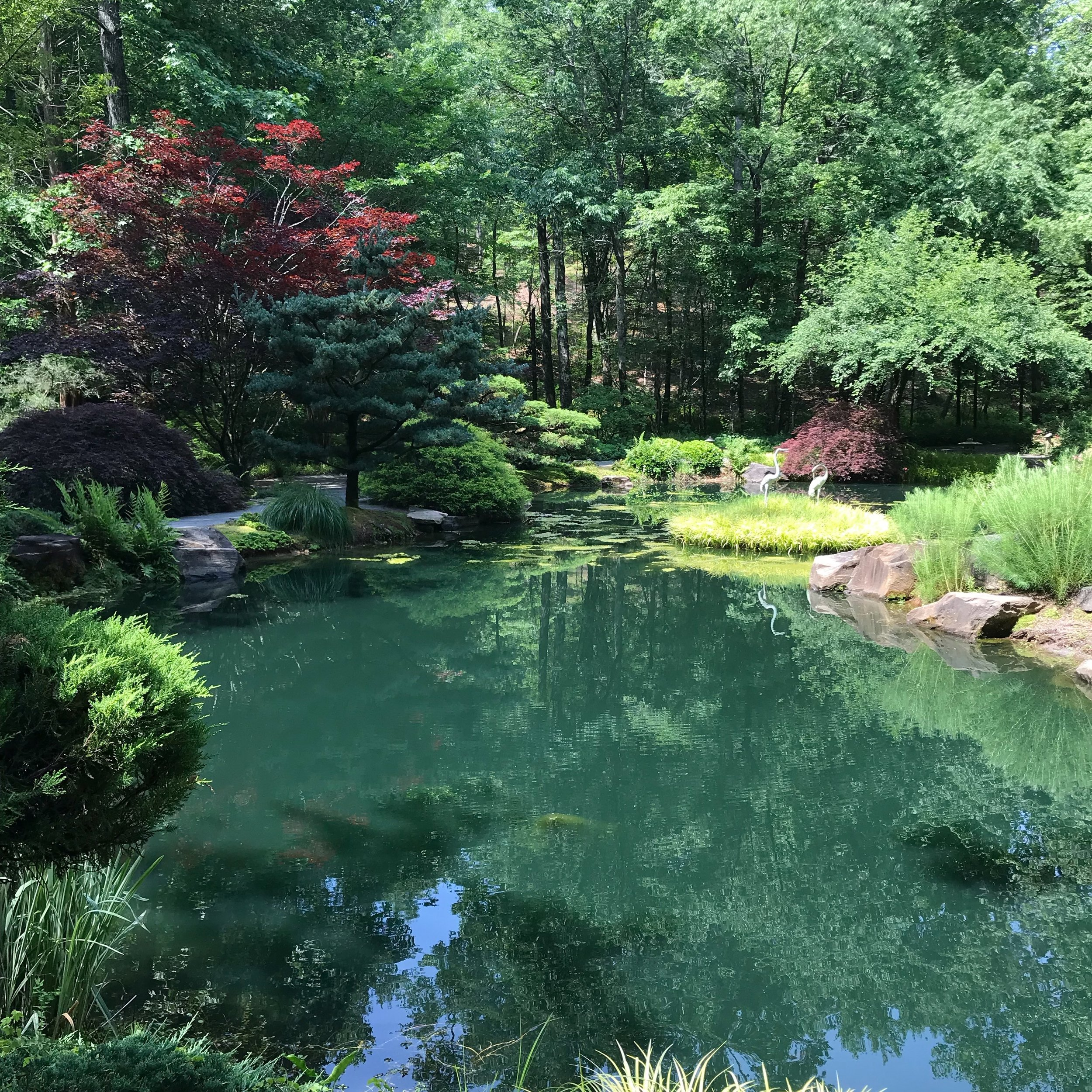 Japanese Garden. Photo credit: Mart Martin
