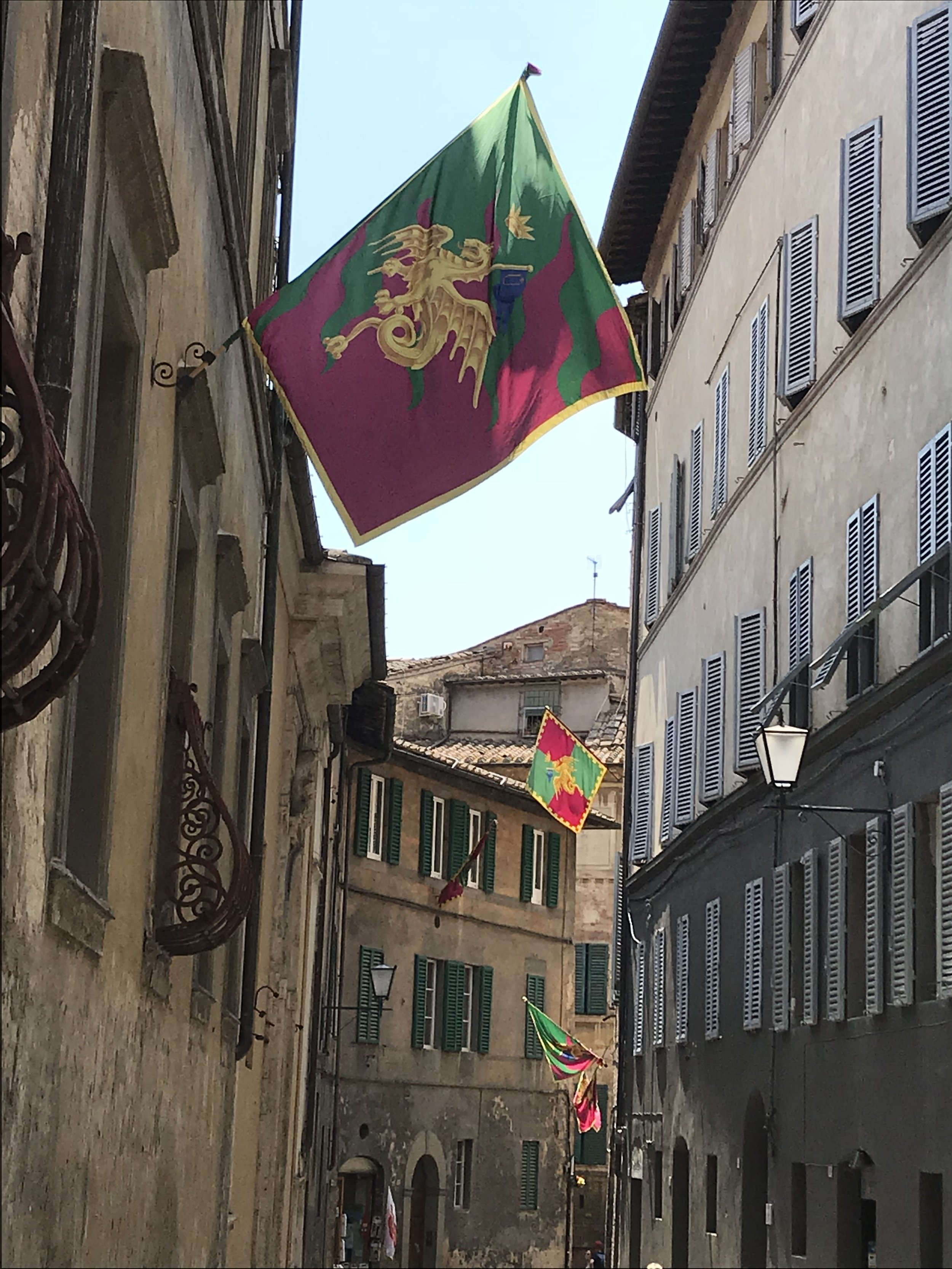 The flag of the neighborhood, Drago (Dragon), that won the famous annual medieval horse race, the Palio di Siena, on July 2, 2018, three days before we arrived. Photo credit: Mart Martin