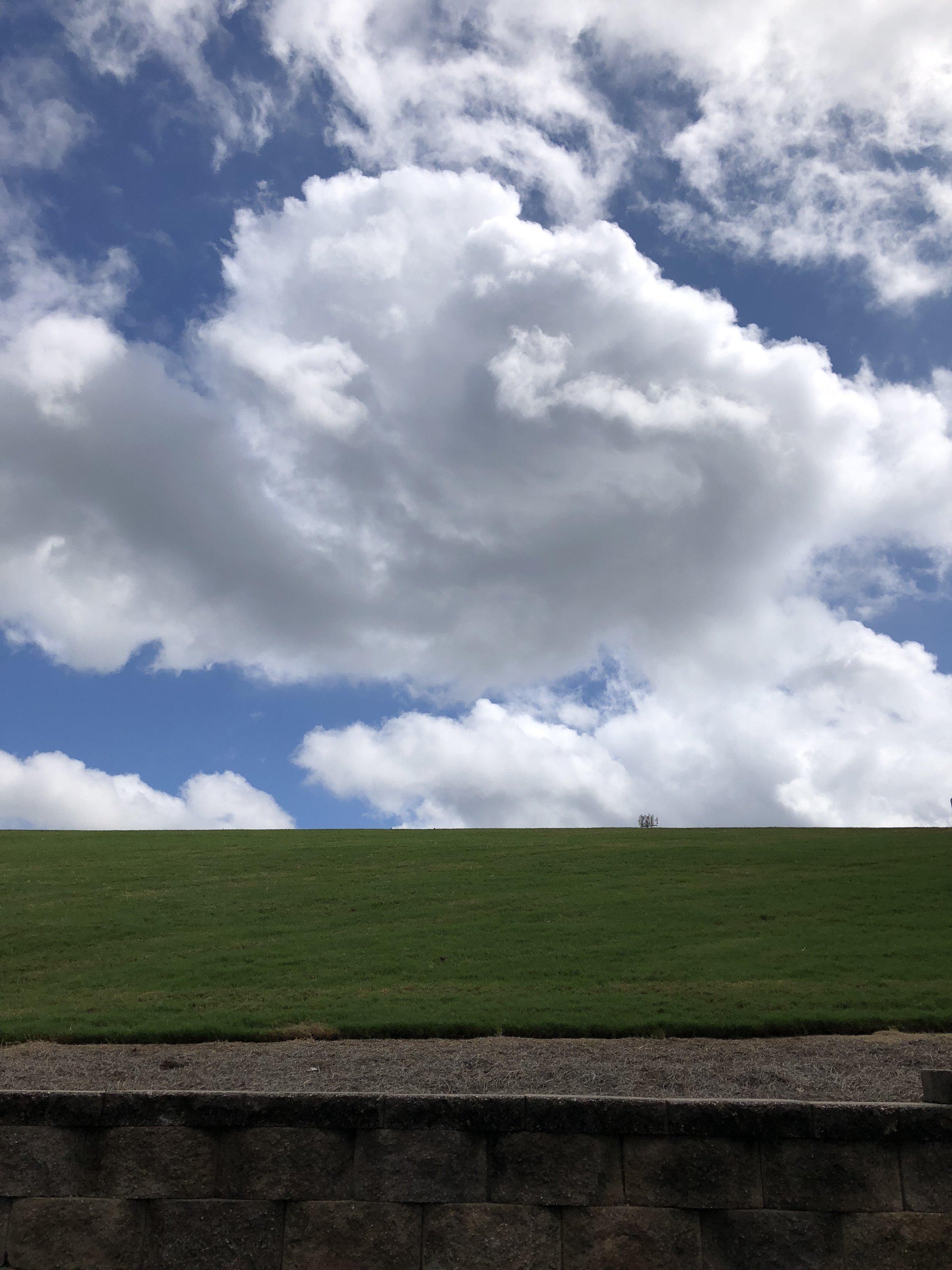 Glimsen-cloud-grass.JPG