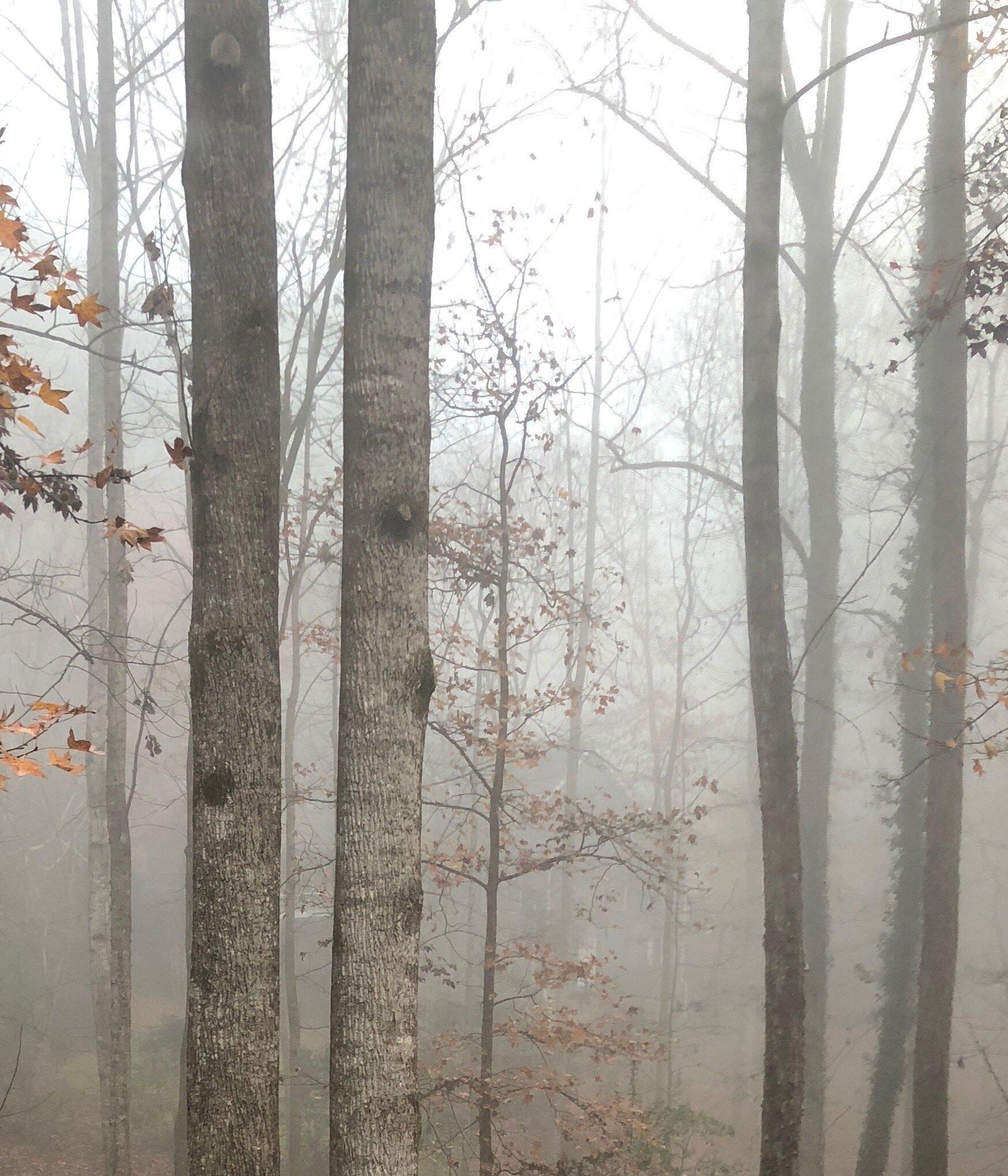 glimsen-gray-morning.jpeg