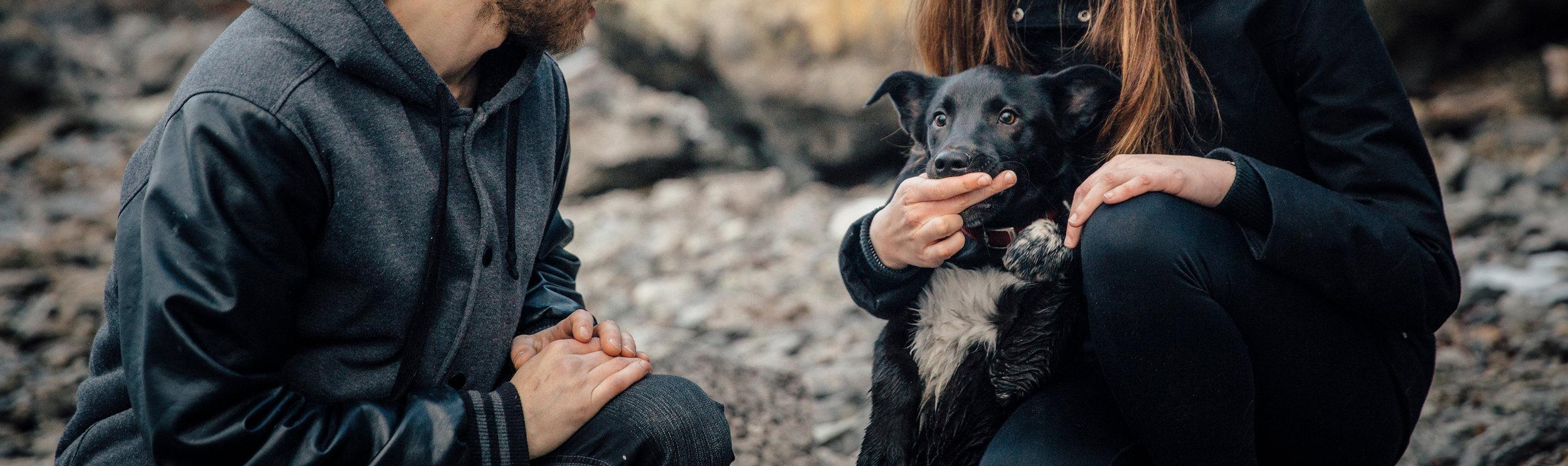Okanagan Pet Photographer at Knox Mountain.
