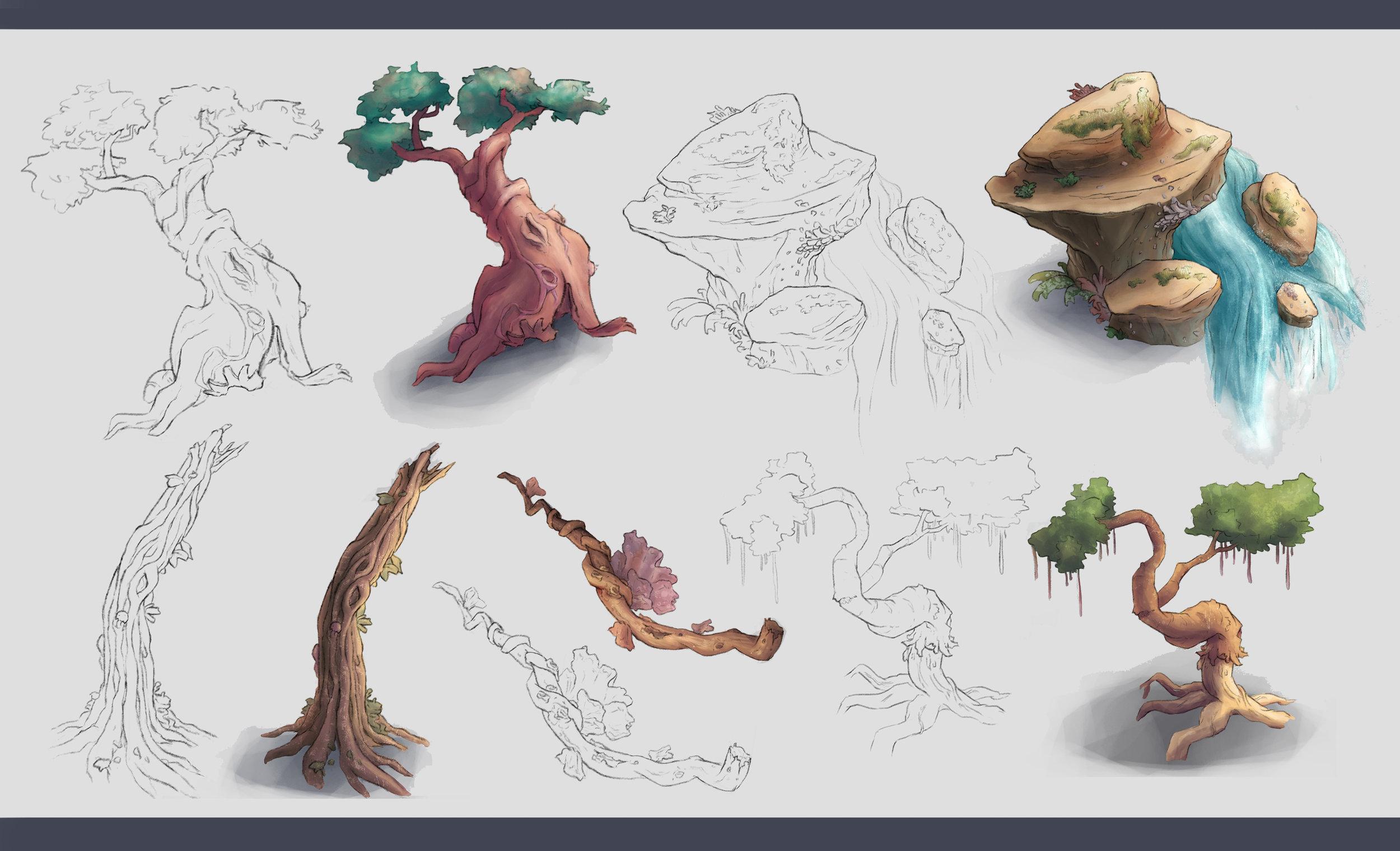 Plants portfolio.jpg
