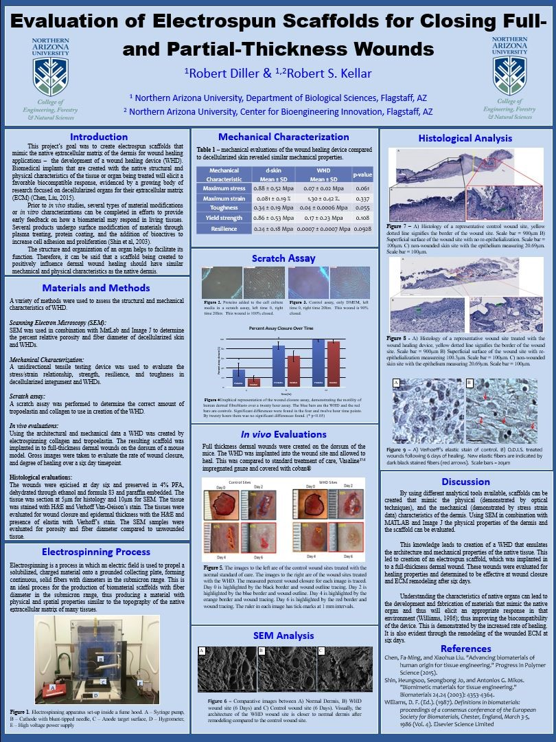 Evaluation of Electrospun Scaffolds for Closing Full and Partial Thickness Wounds poster (2).JPG