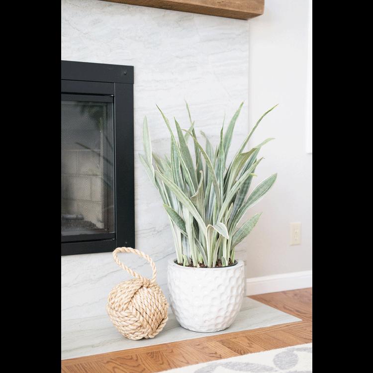 fireplace-beach-details.png