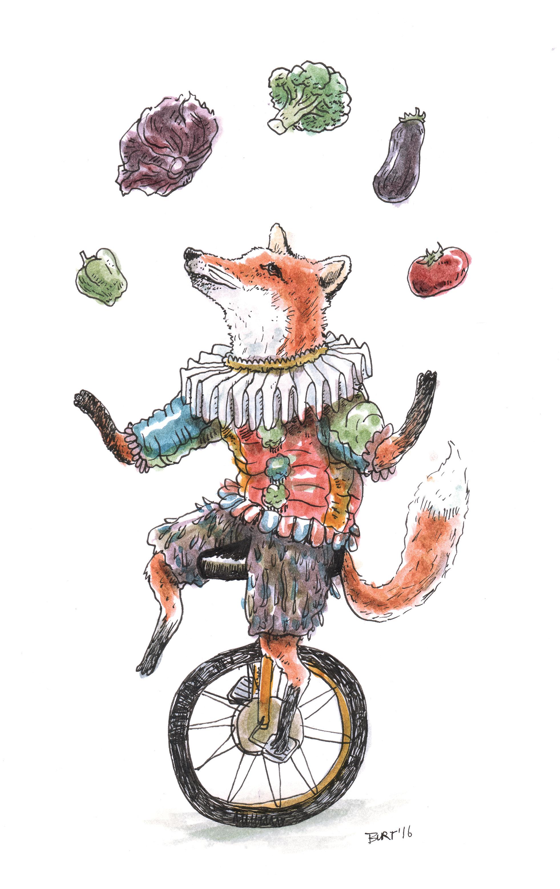 Juggling Fox