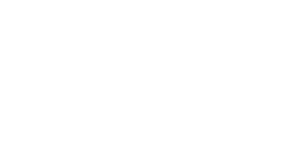 Bau Logo in white (click to view)