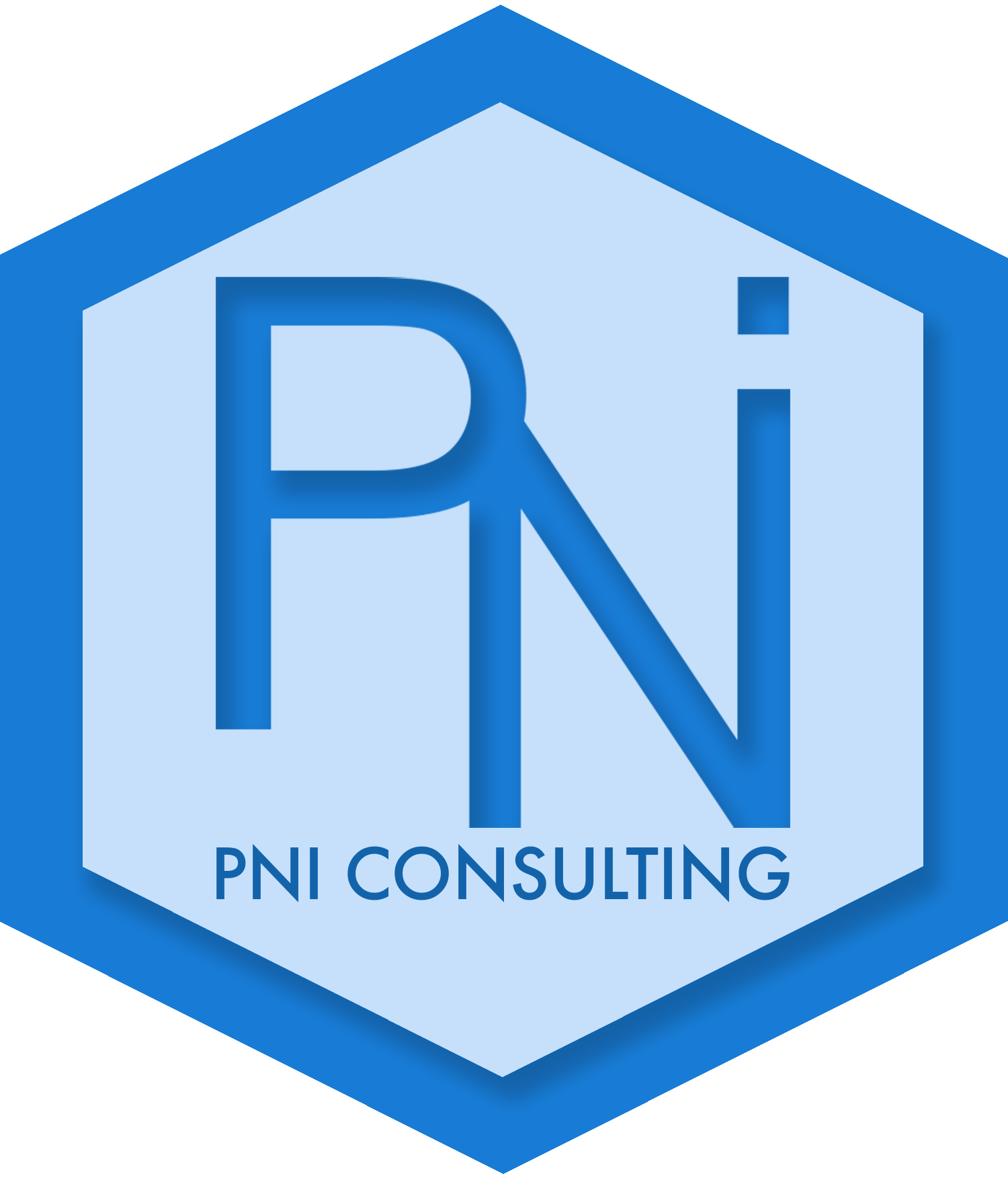 PNI Consulting Logo with Border.png