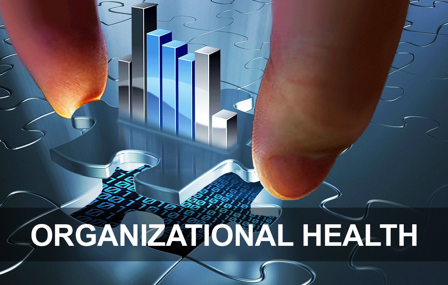Organizational Health Icon.jpg