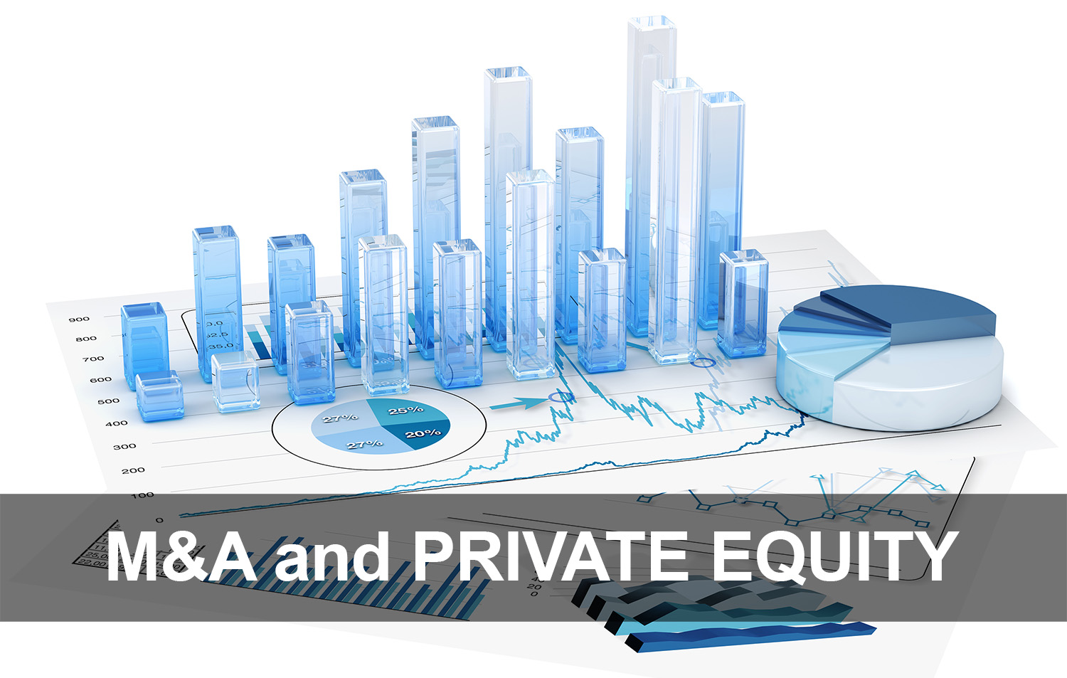 M&A and Private Equity Optimization - PNI.jpg