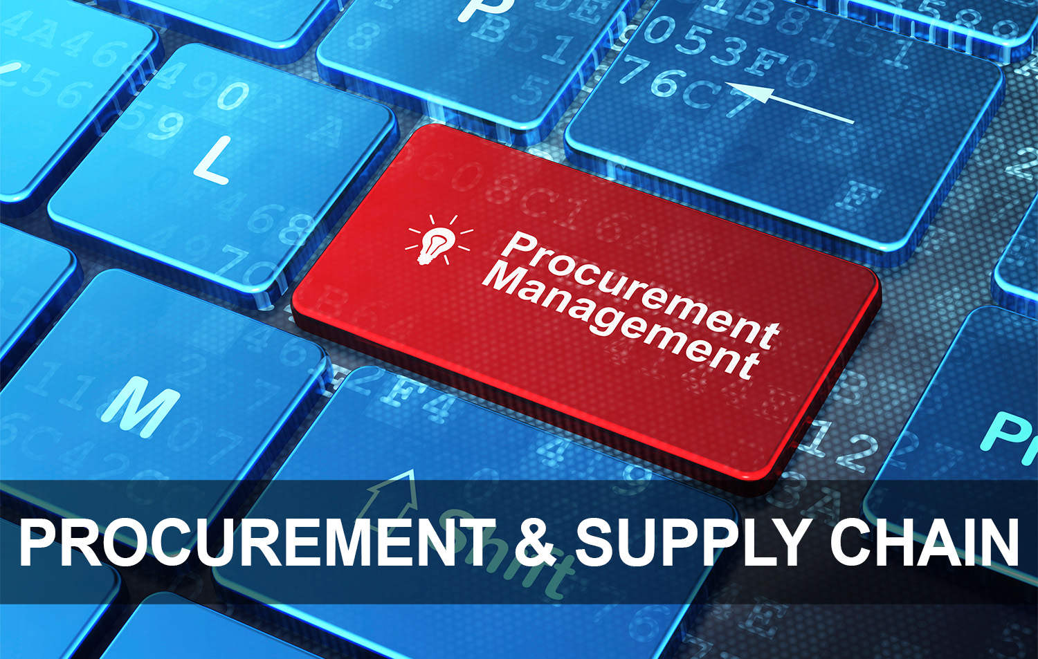 Procurement and Supply Chain Transformations - PNI.jpg