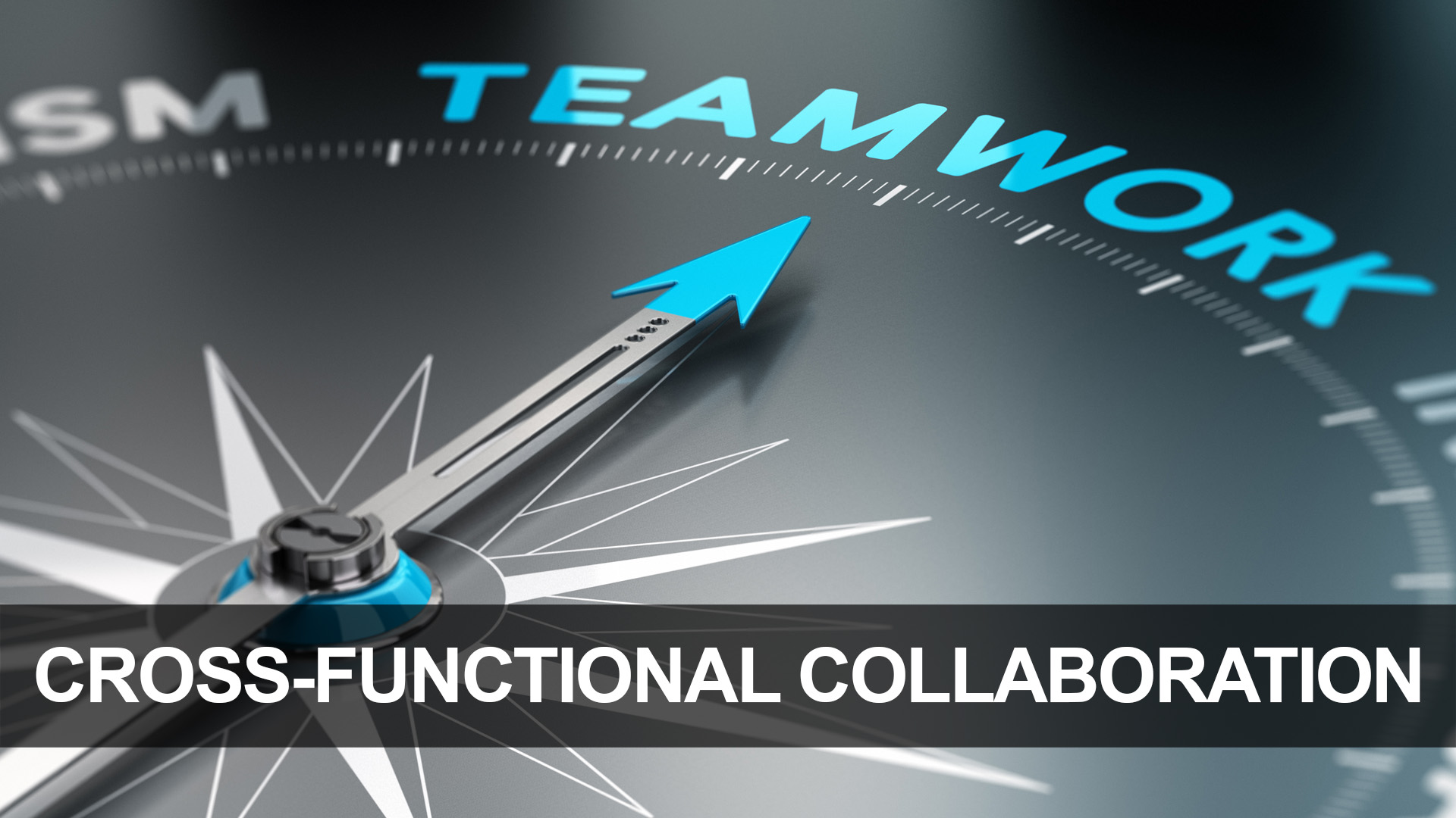 Cross-Functional Collaboration Icon 2.jpg