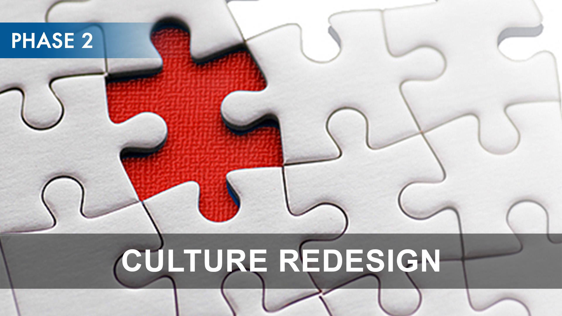 Phase 2 - Culture Redesign.jpg