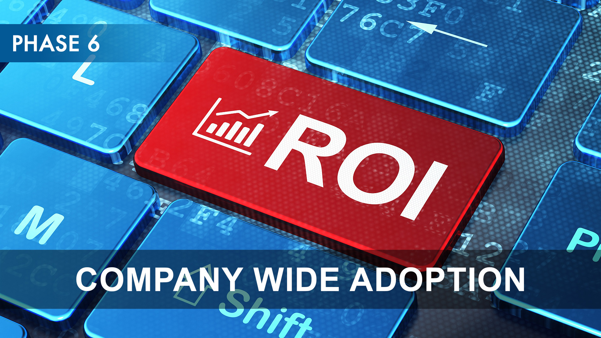 Phase 6 - Company Wide Adoption.jpg