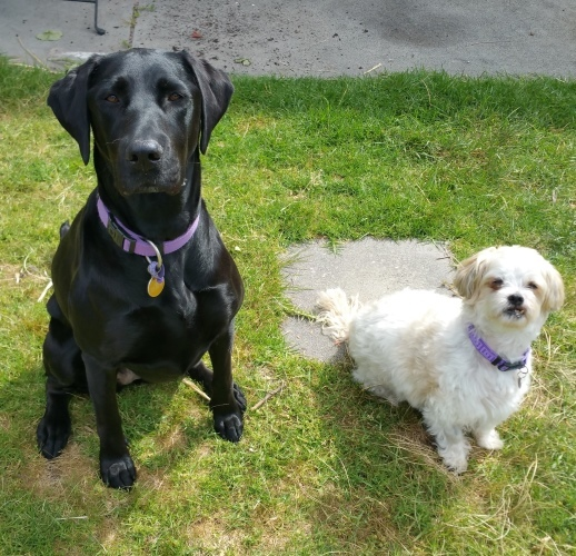 Ella and Heider.jpg