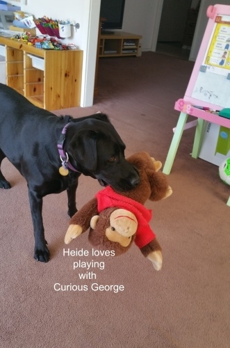 Heide and curious george.jpg