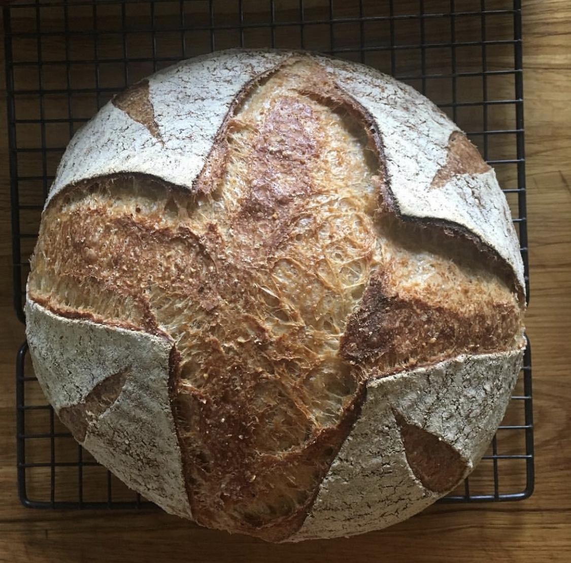 el bread shop