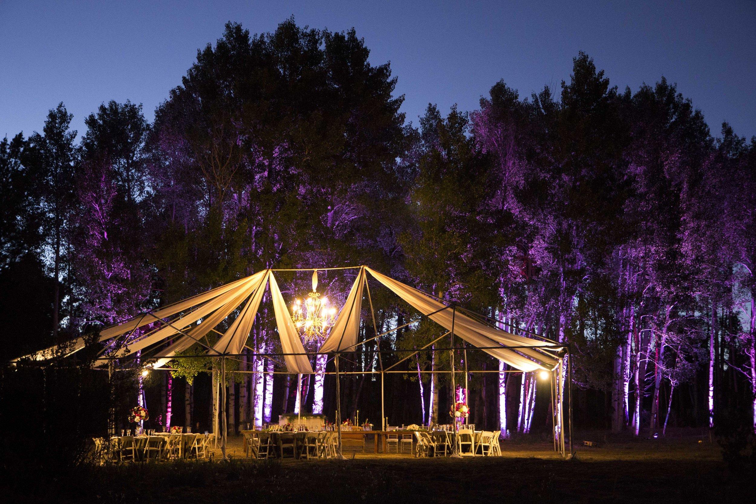Flagstaff Wedding Reception