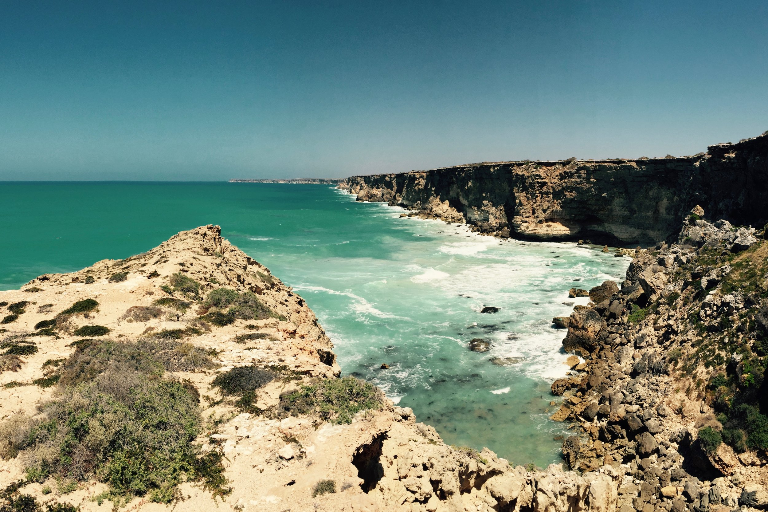 Pictured: The 'Head of the Bight', is a spectacular landscape where the continent of Australia meets the Southern Ocean.