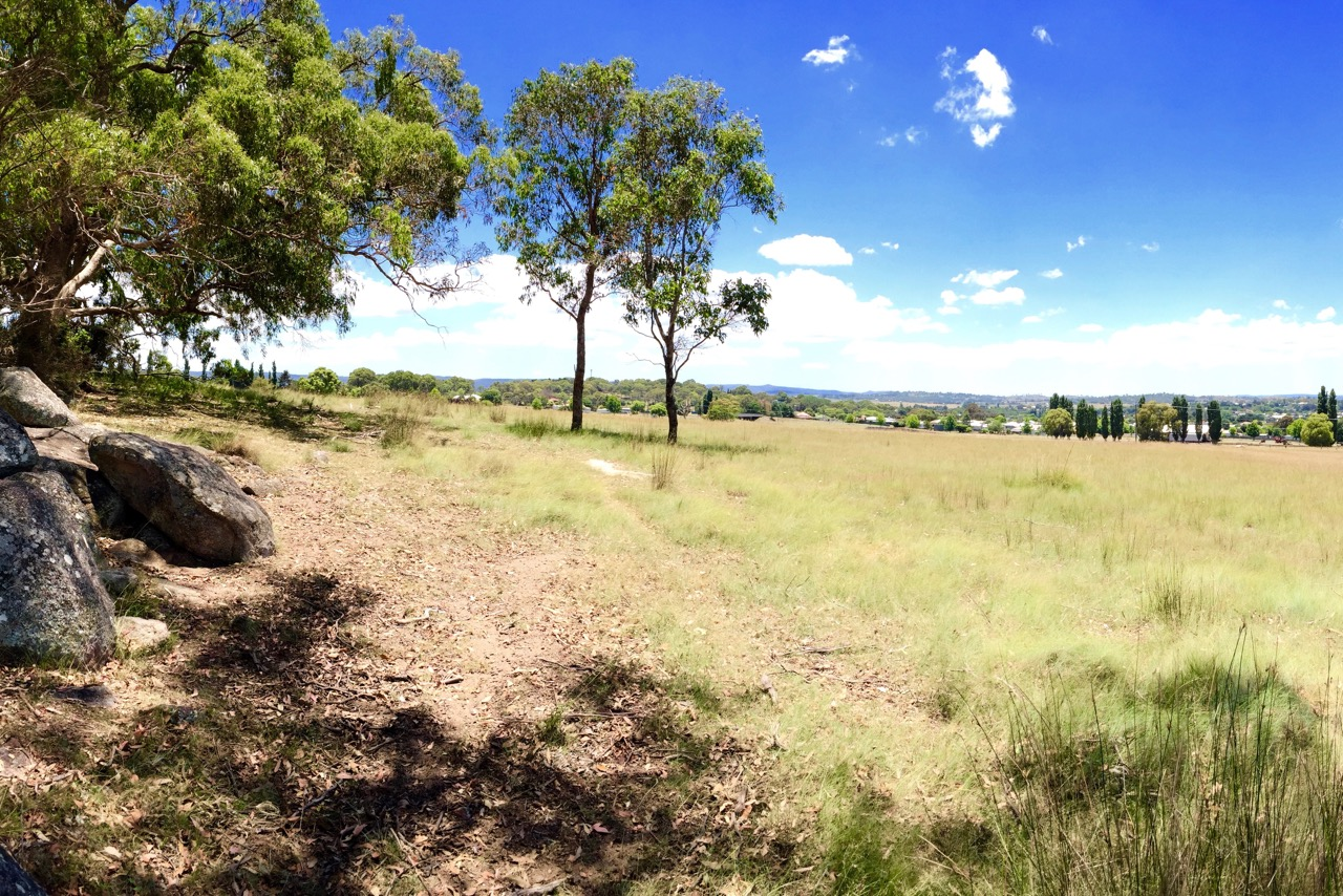 Pictured: The view of Tenterfield from the western side of the property.