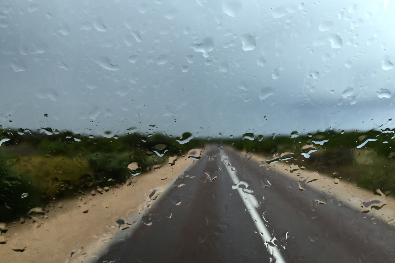 Pictured: The miracle of rain on thirsty land. The Flinders Highway on the Eyre Peninsula, SA.