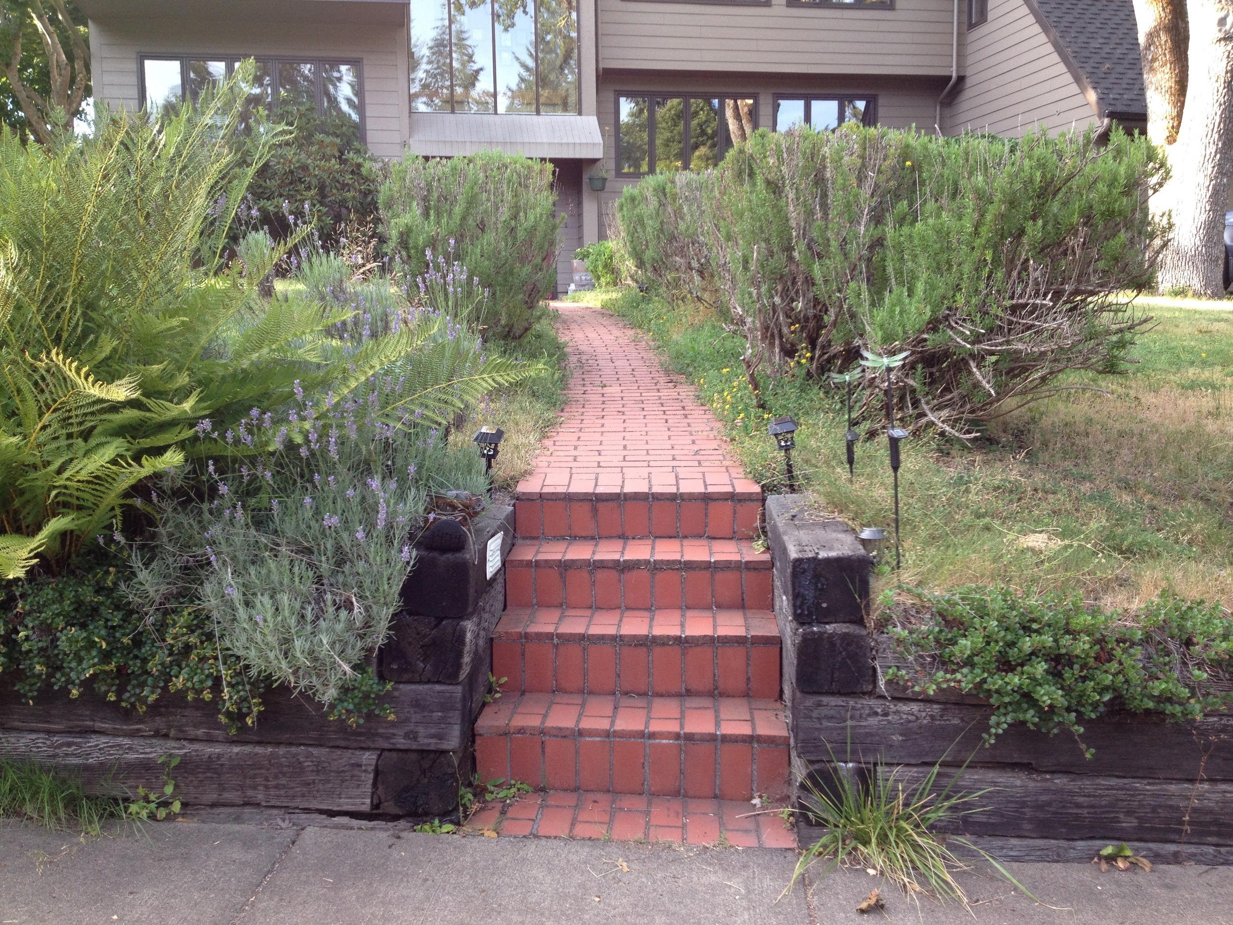 Main Entry Pathway: Before