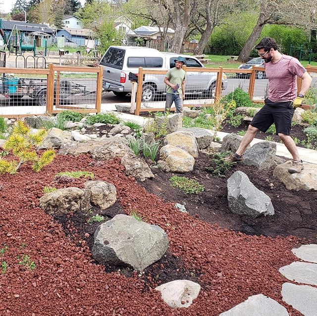 Just finished adding some more Basalt to the Caldara Volcano 🌋 and Lava Flow gardens on Monroe Row. This is my way of trying to bring the power and beauty of the natural world down to the scale of the garden: a miniaturized and stylized Cascade range with dwarf conifers and stonecrops. Every single boulder was hand placed by yours truly and the homeowners are populating the scene with their Bonsai and amazing plant collection.  I love my job! #lava #landscapedesign #landscapeconstruction #landscapecontractor #pnw #alpinegarden