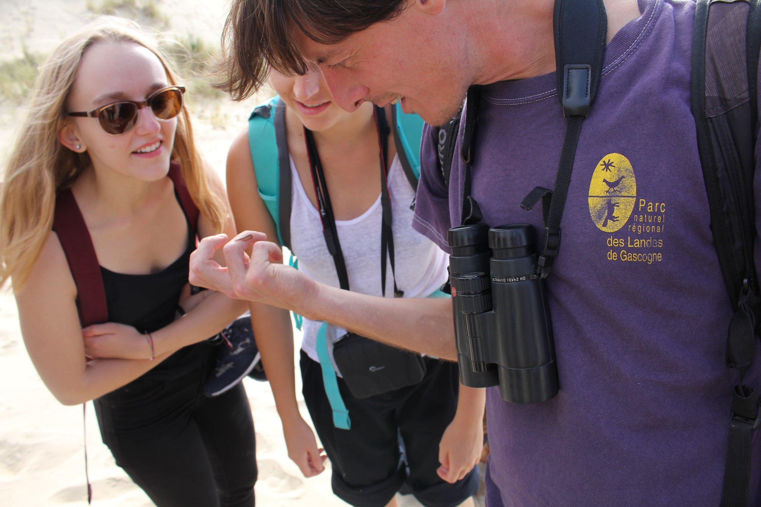 Exploring the Atlantic Coastal Sand Dunes habitat